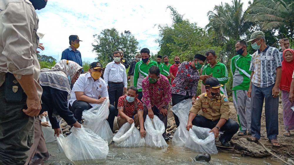 Penebaran ribuan bibit ikan di Lubuk Larangan Desa Pulau Raman, Kecamatan Muara Siau